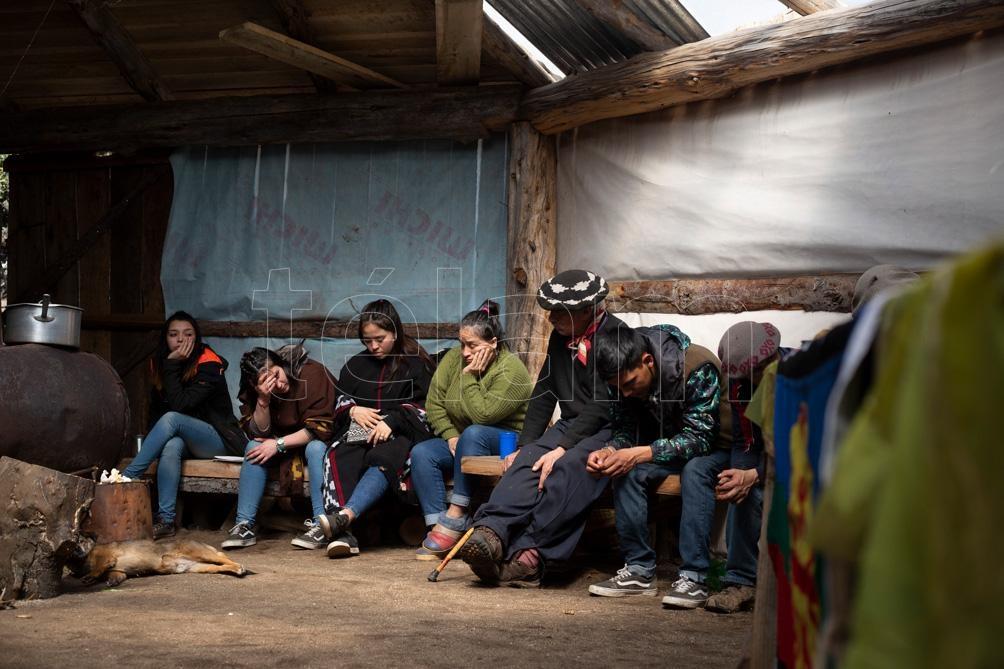 Lof Kinxikew está compuesto por 20 familias y 50 personas.  (Foto: Alejandra Bartoliche).