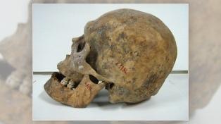 El Museo de La Plata restituirá a Michel, un mapuche asesinado en 1888