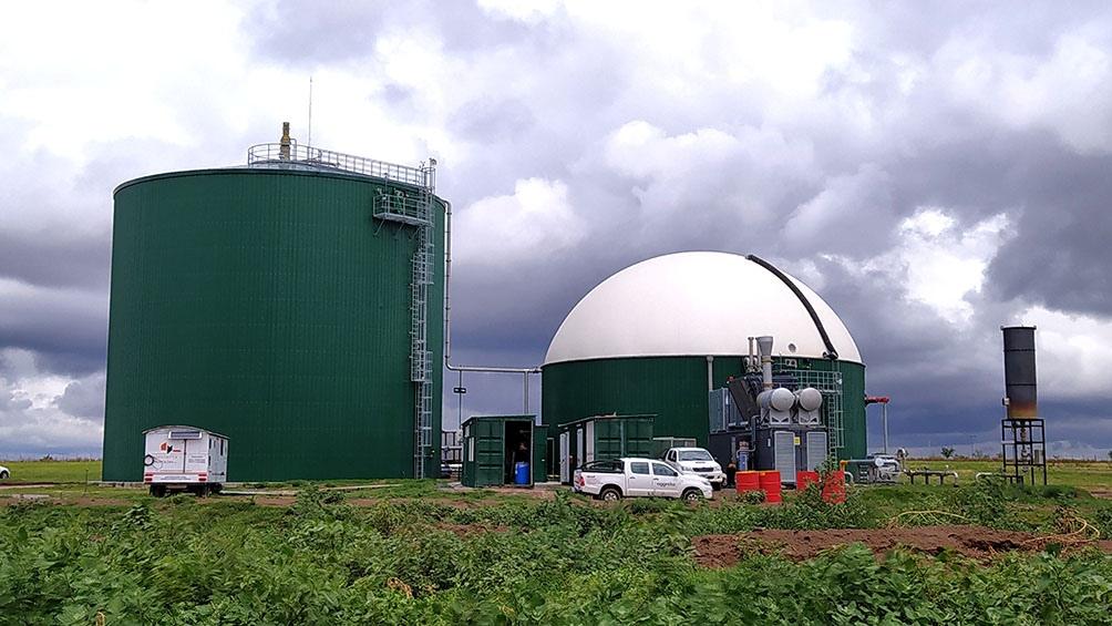 Allí se produce electricidad, usando como combustible residuos forestales y agrícolas. (Foto: INTI).