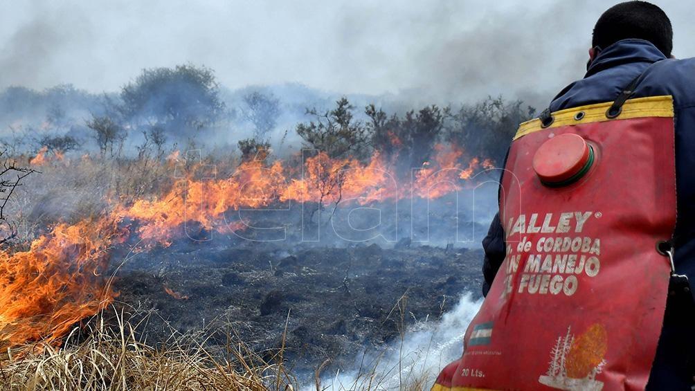 Los incendios comenzaron aparentemente por la caída de tres rayos durante una tormenta eléctrica. Foto: Laura Lescano
