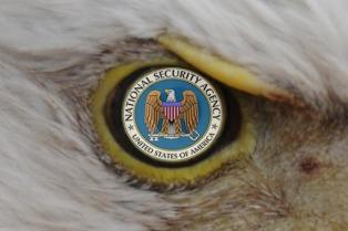 Un defensor del espionaje masivo, candidato de Trump en Inteligencia
