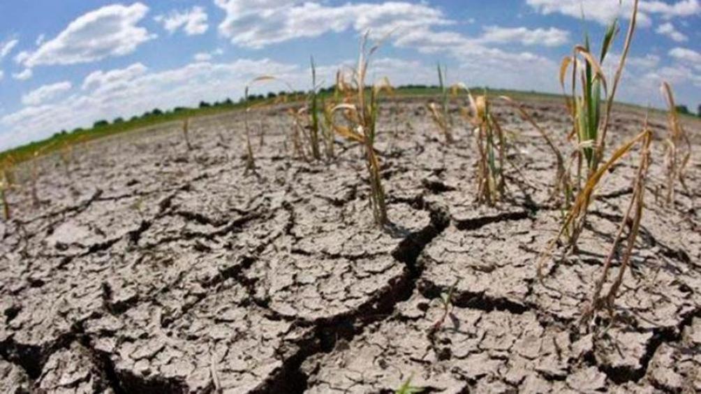 En Entre Ríos, salvo el sureste, el territorio posee entre regular y escasa agua para el cultivo.