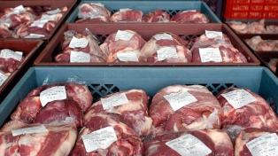 Las exportaciones de carnes crecieron 17% en el primer cuatrimestre