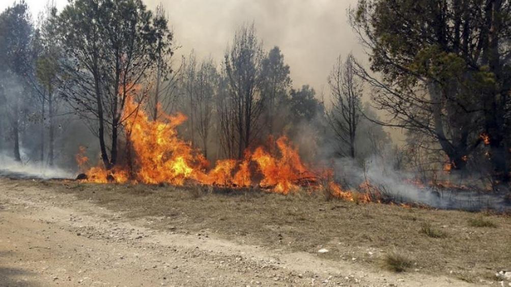 El Gobierno nacional aportó siete aviones hidrantes para combatir el fuego en la provincia.