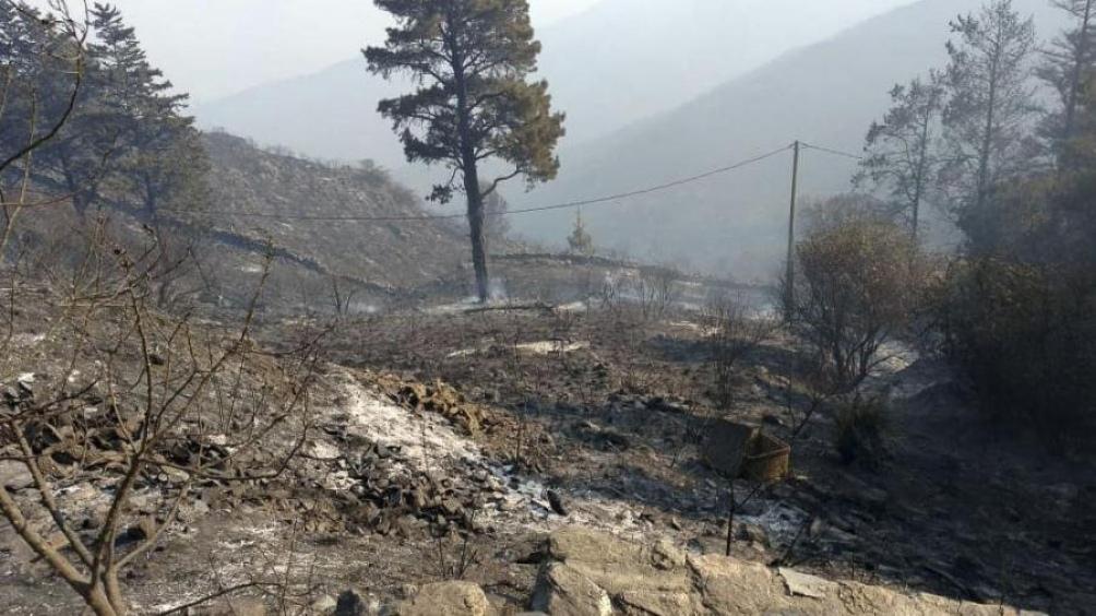 Un centenar de bomberos debieron ser asistidos por lesiones y quemaduras.